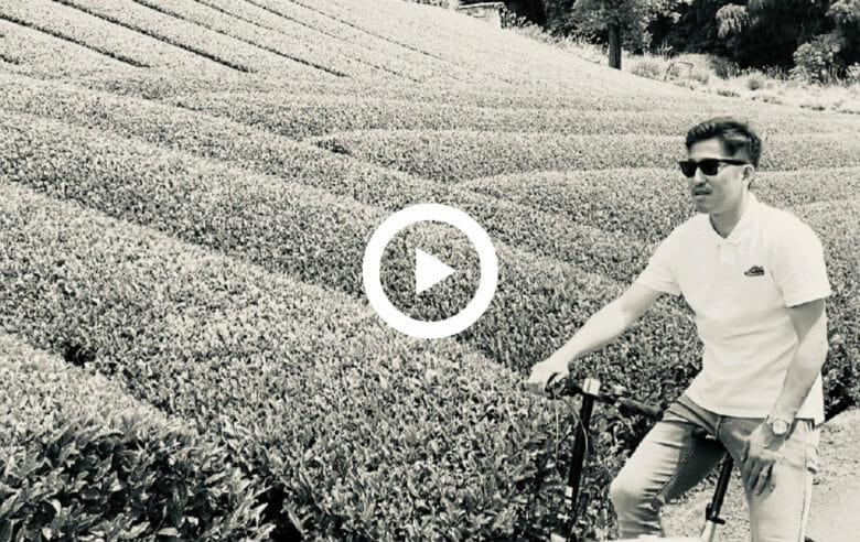 二筆目 和束町/茶畑