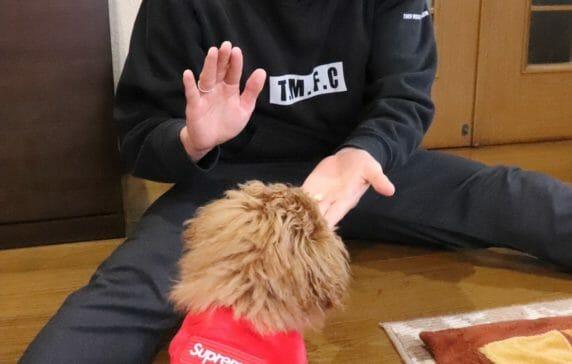 Vol.52 今日の一枚 東京ヴェルディ/澤井直人選手